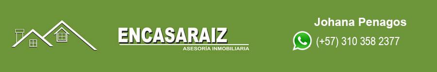 Cabezote